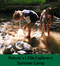 Nature's Little Explorers Camp